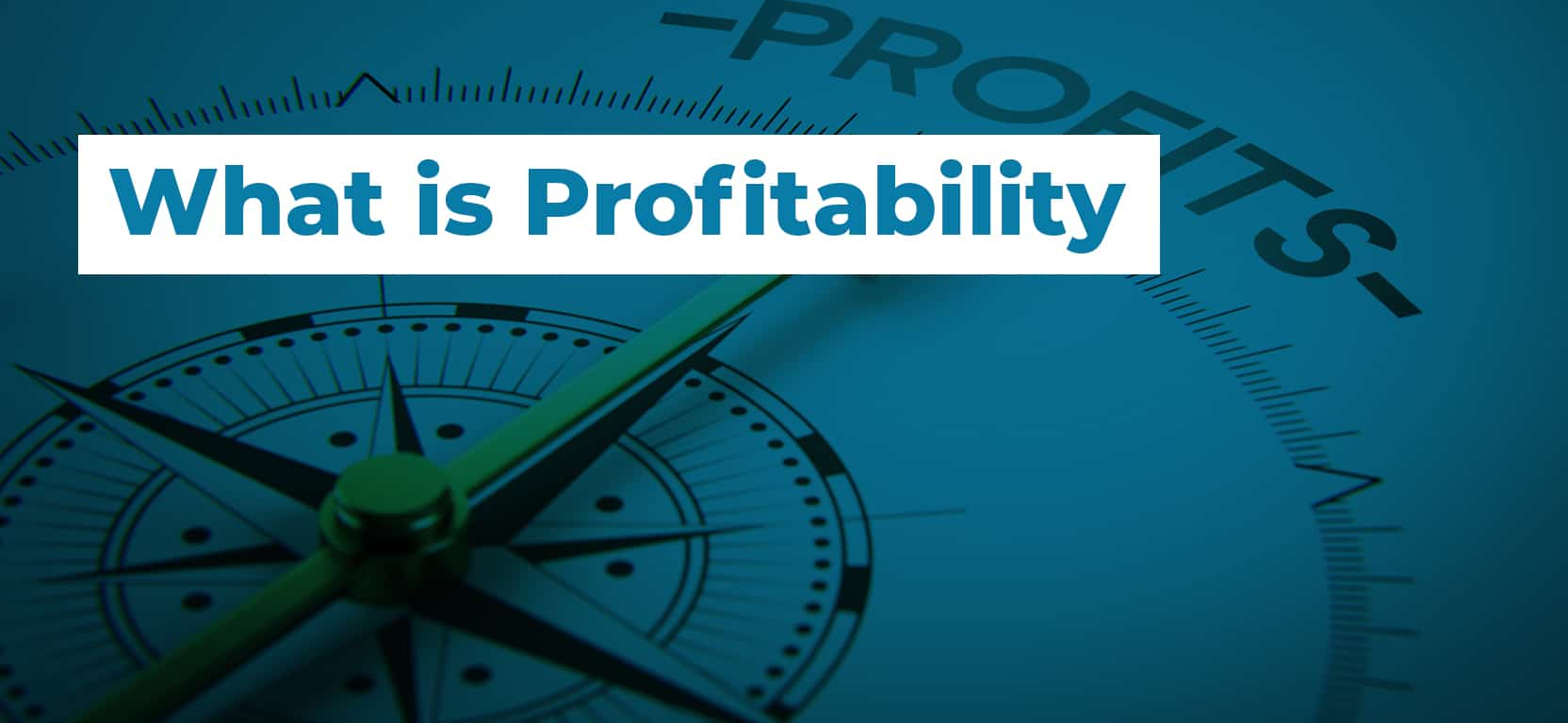 15 What is Profitability