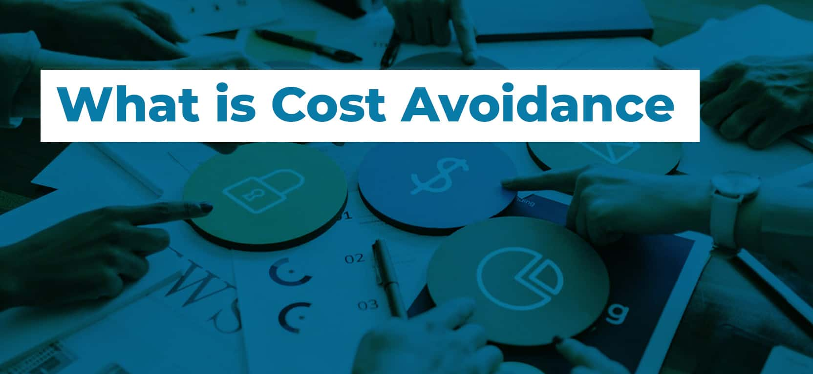 09 What is Cost Avoidance2