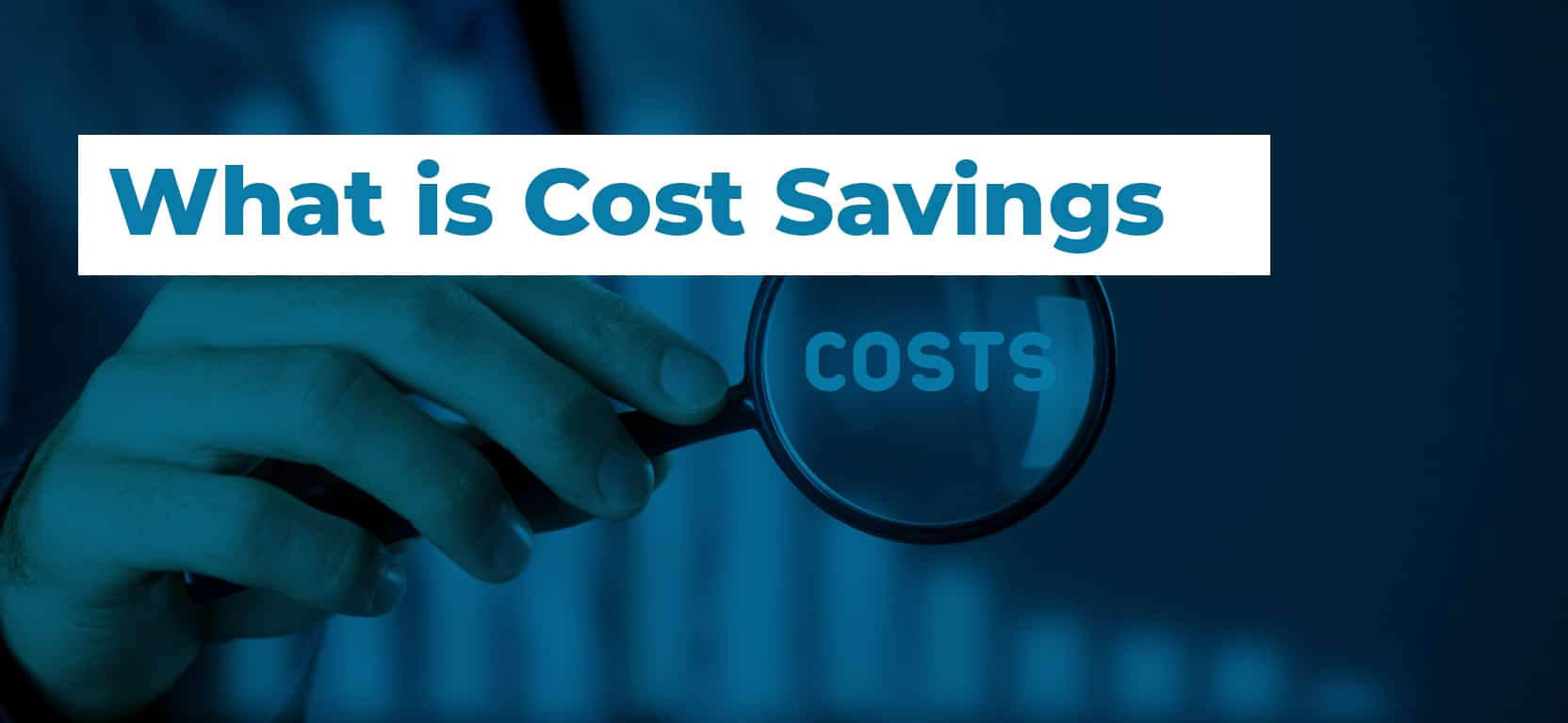 09 What is Cost Savings3