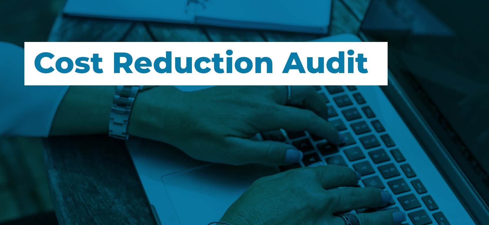 41 Cost Reduction Audit3